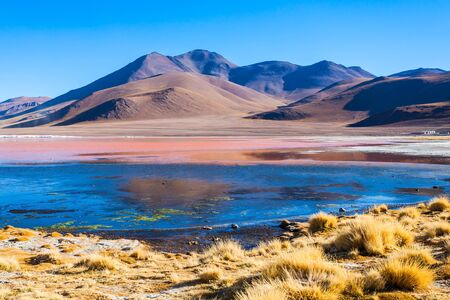 Laguna Colorada (Red Lake) is a salt lake in the Altiplano of Bolivia