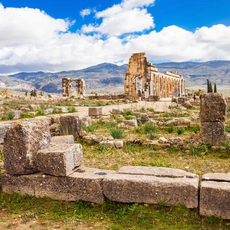Volubilis near Meknes in Morocco. Volubilis is a ruined Amazigh, then Roman city in Morocco near Meknes, UNESCO World Heritage Site.