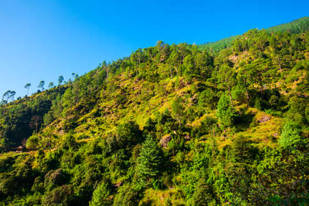 Scenic landscape panoramic view of the forested Himalaya mountains, Himachal Pradesh state in India