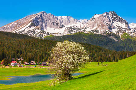 Zabljak town and Durmitor mountain massif in Montenegro