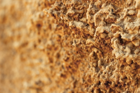 sand the coastal cliffs in Israel close-up
