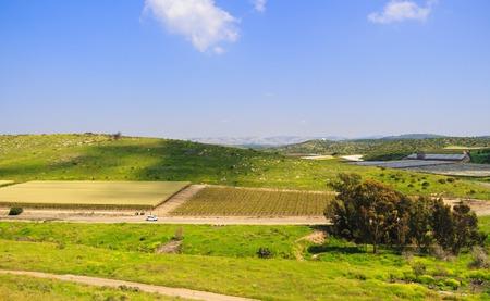 Israeli beautiful landscape overlooking fields in negev