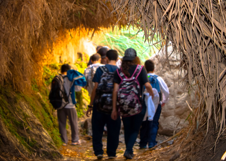 Tourists at Ein Gedi in Nahal David canyon on the way to waterfall. Stock Photo