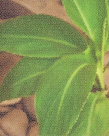 Large leaves on the background of stones. Filtration in the form of a mesh