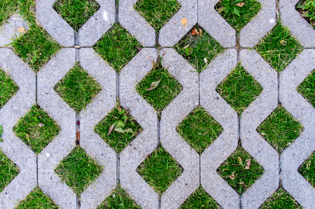 Texture paving with green grass