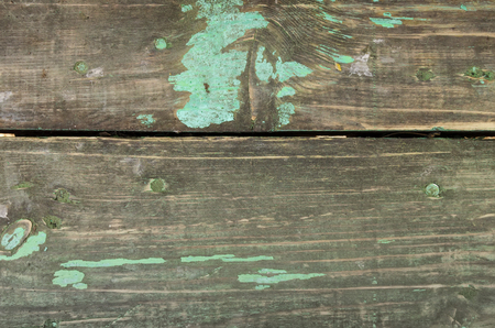 texture of rustic green painted