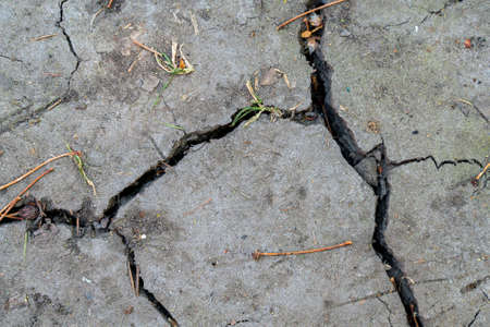 Cracked ground texture with grass pieces