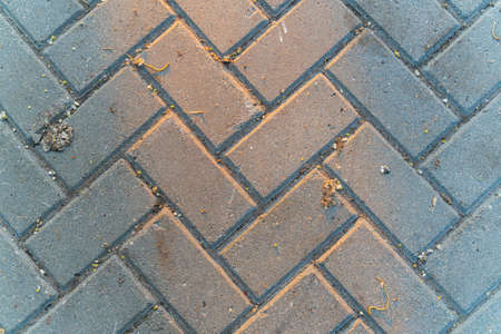 The gray texture of paving tile. Sun