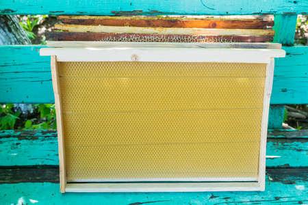 New beekeeping frames with a train Standard-Bild