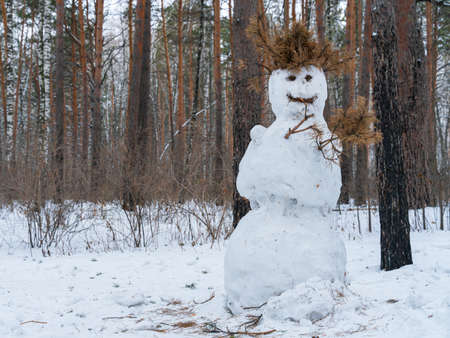 Ugly snowman in the forest