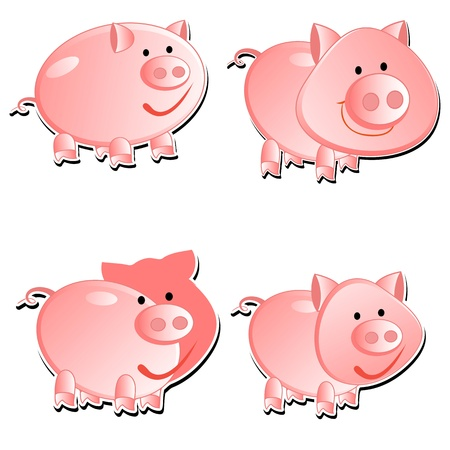 Set from 4 pigs Vector