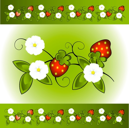 Red wild strawberry a berry and a white flower Illustration