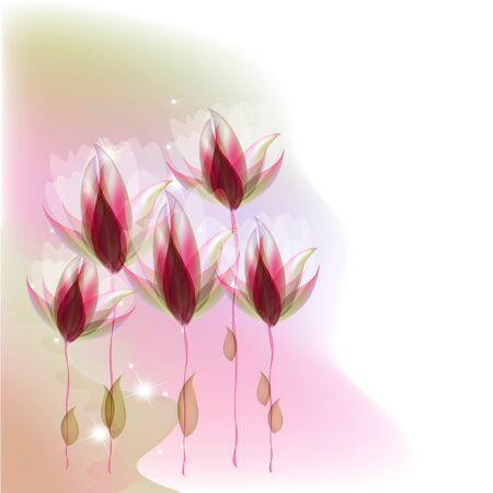 creative potential: Flowers bright a background are more transparent