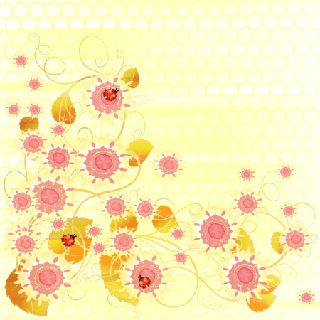 softly: Flowers bright a background are more transparent