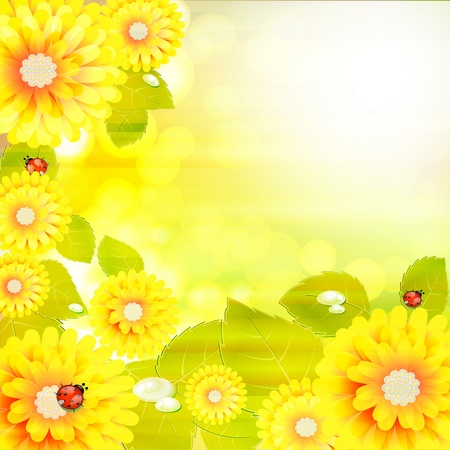 Flowers bright a background are more transparent Vector