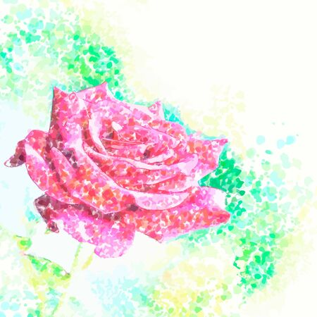 rose on a color background Vector