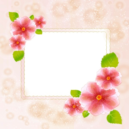Flowers bright a background are more transparent Stock Vector - 15464835
