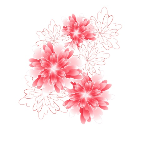 Flowers bright a background are more transparent     Illustration