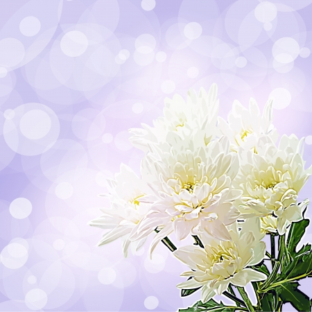 Flowers on bright a background     Stock Vector - 17014637