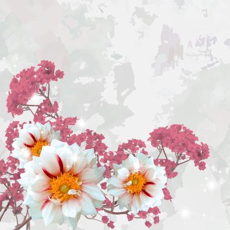 softly: white dahlias on a fantasy background