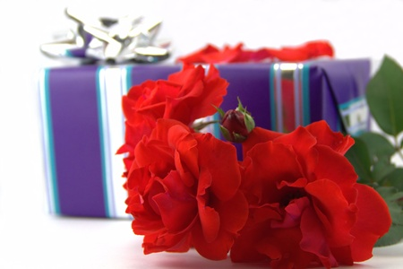 Red rose and a giftbox for him photo