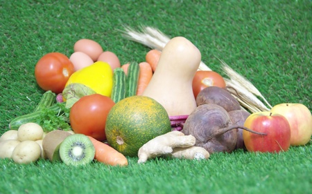 Fresh healthy food on green grass background photo