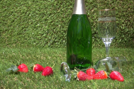 Champagne bottle and glasses on the green grass Stock Photo - 15427384