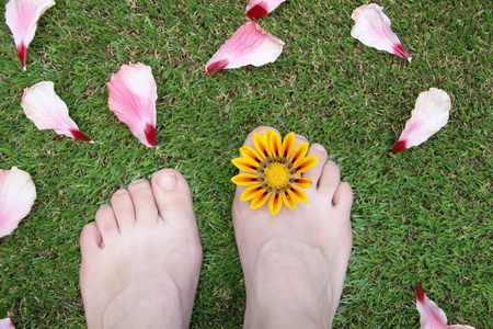 Feet on the grass with flower