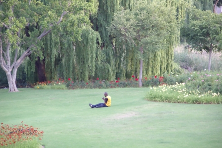 Man is having a rest on the grass, using mobile phone Stock Photo