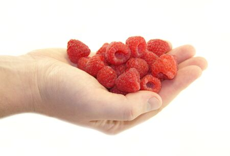 Sweet raspberries in the hand on white background