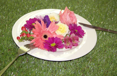 Diet concept - flowers on a plate on the green grass Stock Photo