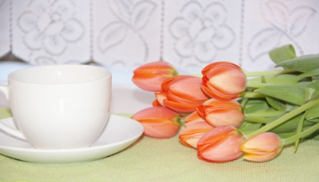 Tulip flowers and a cup of tea Stock Photo - 18390582