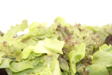 Fresh green mixed salad Stock Photo