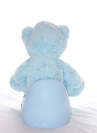 Teddy bear is sitting on the blue potty