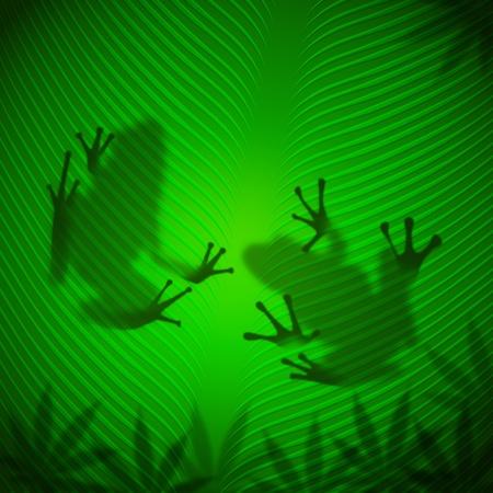 Frog shadow on banana leaf in the tropical sun  Reklamní fotografie