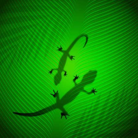 Lizard shadow on banana leaf in the tropical sun