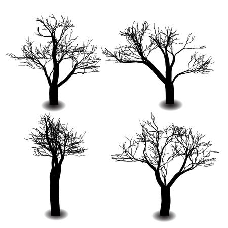 bare tree: A silhouette is the image of a person, an object or scene represented as a solid shape of a single color, usually black, its edges matching the outline of the subject.