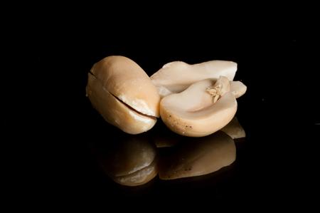 「ペン先」を含むピーナッツのマクロ。