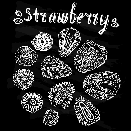 Strawberry hand drawn vintage seamless pattern doodle vector illustration.