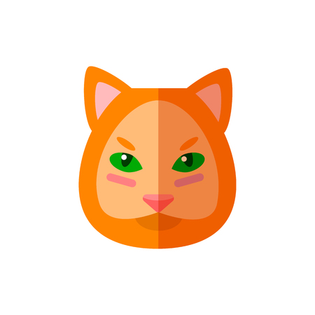 Cat animal icon vector illustration