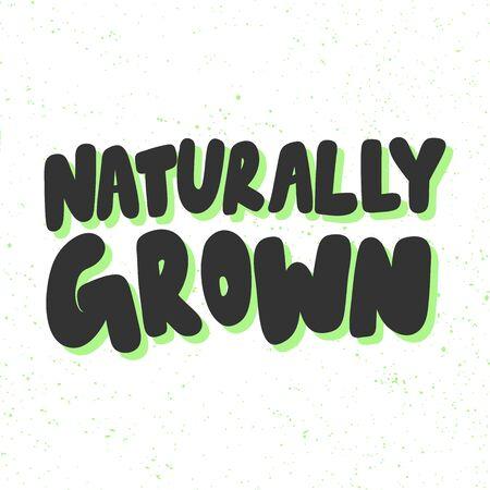 Naturally grown. Green eco bio sticker for social media content. Vector hand drawn illustration design.