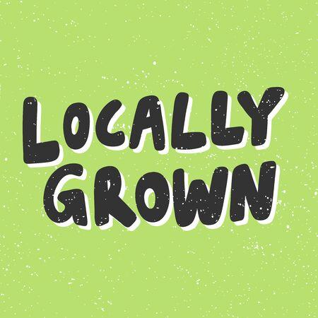 Locally grown. Green eco bio sticker for social media content. Vector hand drawn illustration design. Vettoriali