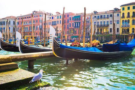 Mooie weergave van verankerde gondels op Grand Canal in Venetië