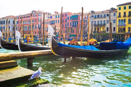 Nice view of anchored gondolas on Grand Canal in Venice
