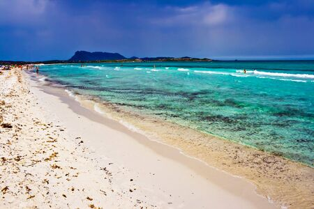 cinta: Sandy beach La Cinta near San-Teodoro, Sardinia