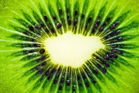 Macro  of a fresh kiwi Stock Photo - 6590722