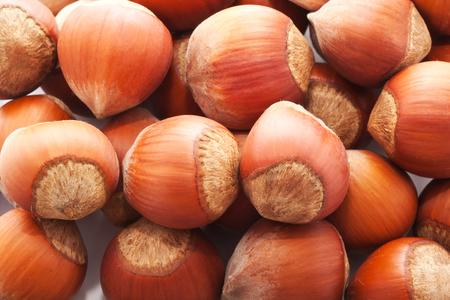 filbert: Heap of hazelnuts, filbert nuts making background