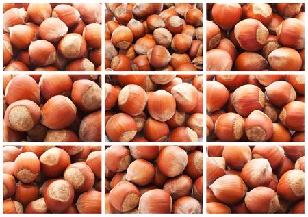 filbert: Collection of hazelnuts, filbert nuts making background Stock Photo