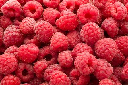 Many fresh red raspberries making beautiful background