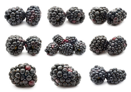 Collection of fresh blackberry isolated on white background Stock fotó